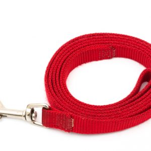 A red dog leash isolated on a white background, walking the dog